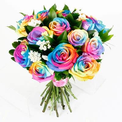colorful roses colourful roses wallpaper www pixshark images