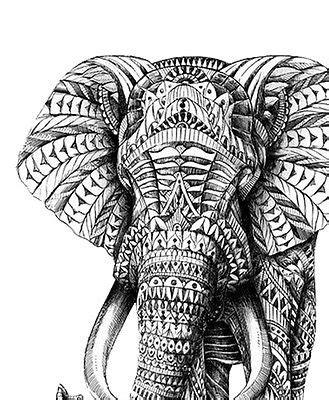 tumblr coloring pages elephants elephant bohemian tumblr mandala minimalist illustration