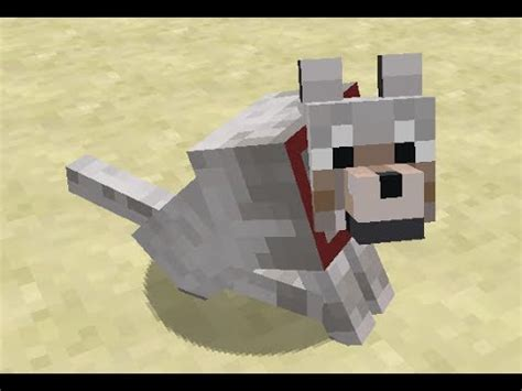 minecraft dogs fetch in minecraft
