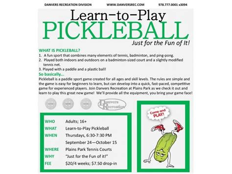 how to learn want to learn how to play pickleball in danvers danvers ma patch
