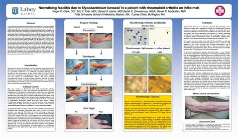 scientific poster layout exles poster gallery phd posters