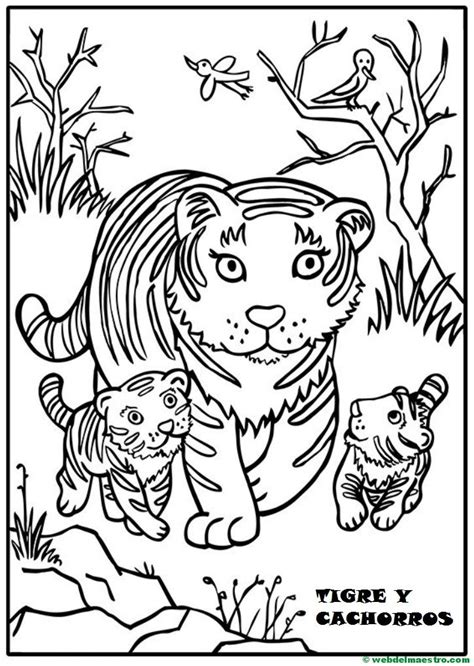 dibujos para pintar web dibujos para pintar animales y sus cr 237 as web del maestro