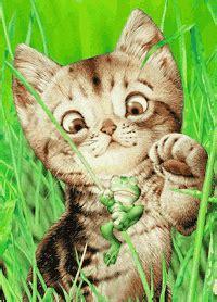gifs animados de gatos gifs animados