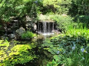 Pics photos lush backyard garden romantic california garden country living