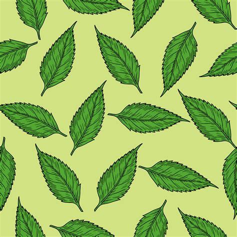 pattern bush in leaf green clipart summer leaves pattern