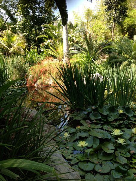 Best Botanical Gardens In California 17 Best Images About Wot Los Angeles On Gardens Parks And Cas