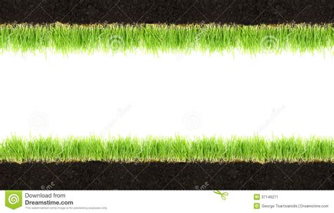 grass section cross section frame of soil and grass stock image image