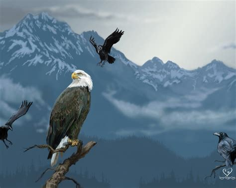 the not so complete birds afoul of america books eagle hawk wallpapers animals wiki pictures