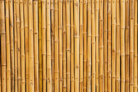 Bamboo Home Decor by Multi Use Bamboo Surface Protector Sorbco Llc