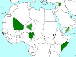 islamic state west africa province iswap boko haram