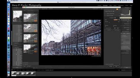 nik software workflow nik software for lightroom 5 cocosalla s