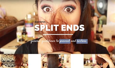 10 Ways To Treat And Prevent Split Hair Ends by Hair Split Ends Prevent Remove At Home General Guidelines