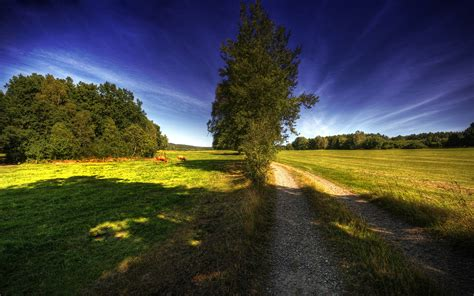 country wall country road wallpaper 82309