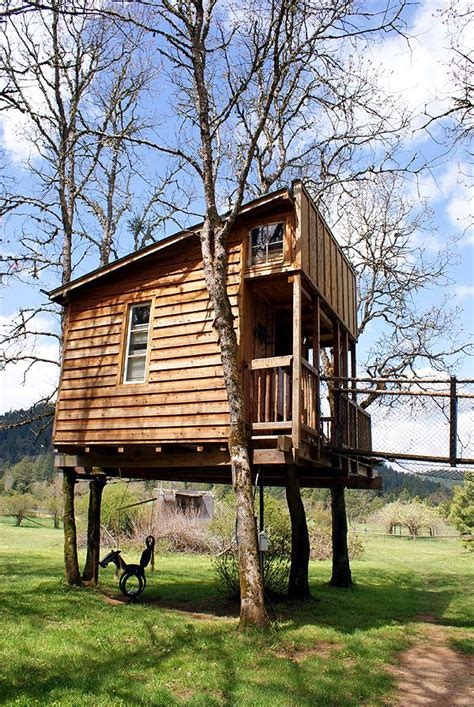 small tree house plans wooden tree house plans on stilts best house design design tree house plans on stilts
