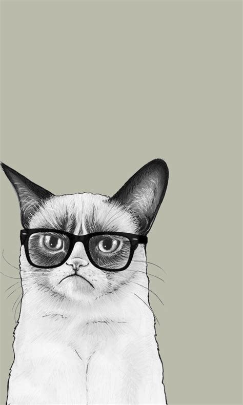 iphone wallpaper grumpy cat grumpy cat fondos de pantalla gratis para 768x1280