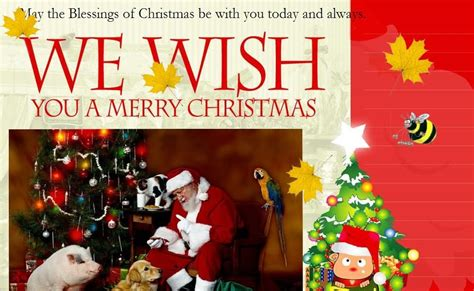 picture photographydownload portrait gallery christmas greeting cards christmas greeting