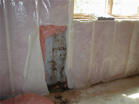 basement finishing drywall in basements mold boston
