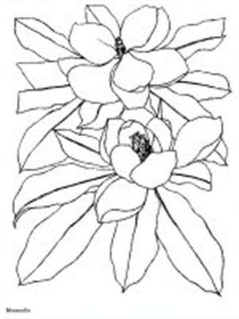 Lukisan Bunga Ma 63 edera9650 disegni da colorare per adulti e ragazzi