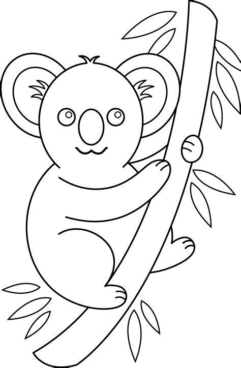 koala coloring page free clip art