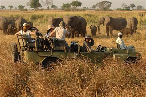 a winter tour in south africa classic reprint books botswana africabound adventures