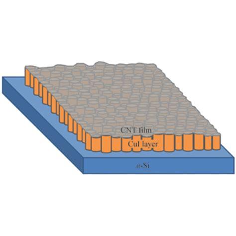 Glass Lorikeet Loricoin Cnt 011 photocatalytic recyclable cds nanoparticle carbon nanotube hybrid sponges
