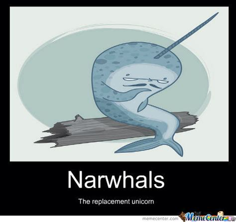 Narwhal Meme - oh narwhals by parrett7 meme center