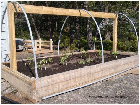 raised garden beds diy cheap 25 best ideas about cheap raised garden beds on
