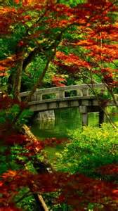 japanese garden kyoto japan nature pinterest