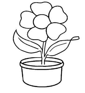 Sketsa Gambar Bunga Matahari Untuk Kolase Informasi Seputar Tanaman Hias