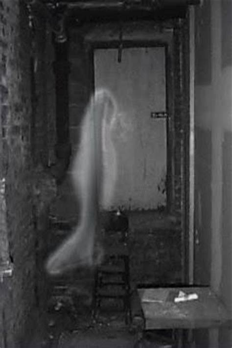 the room in the tower and other ghost phantoms and monsters pulse of the paranormal