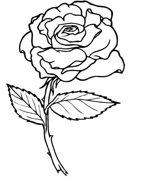 roses coloring pages coloring pages coloring lab