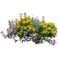 vasi fiori dwg alberi in pianta per photoshop cerca con