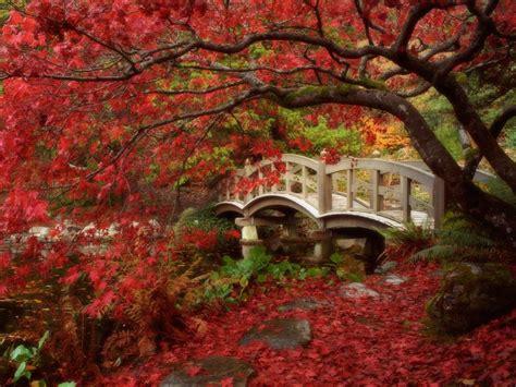 japanese garden british columbia wallpapers hd