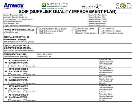 template for quality improvement plan best photos of supplier improvement plans supplier audit