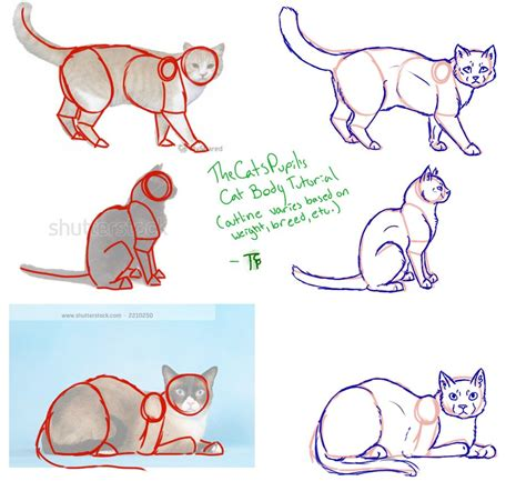 how to draw doodle cat cat tutorial by thecatspupil on deviantart