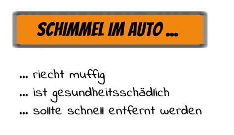 Schimmel Und Feuchtigkeit Im Auto by Schimmel Im Auto Richtig Entfernen So Geht Es