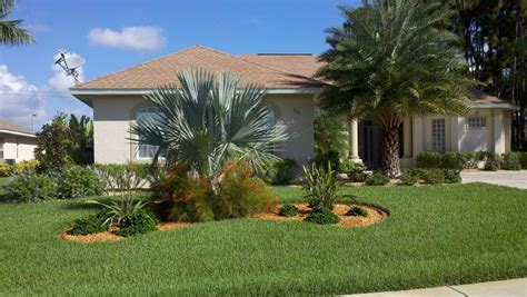 Front Yard Tree Landscaping Ideas Landscaping Ideas Front Yard Palm Trees Home Design Ideas