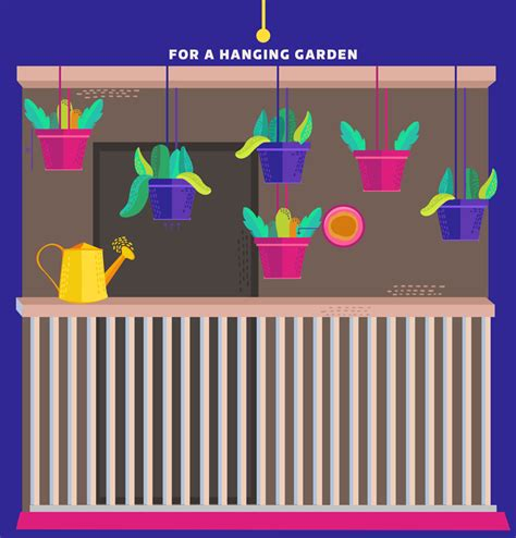 infographic   plant  awesome balcony garden