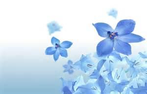 Pinterest Blue Bedrooms moons flower blue flower wallpaper