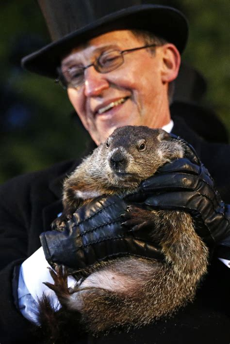 groundhog day 2015 spin cycle 6 more weeks of cold wind to up jenner s