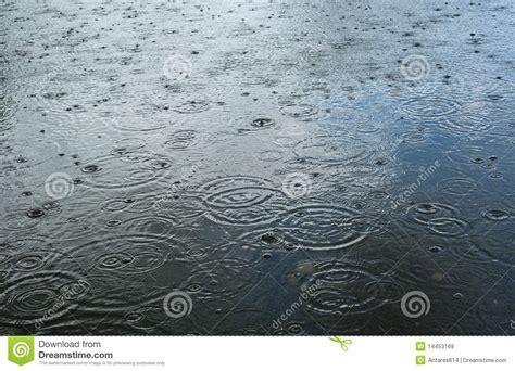 imagenes libres lluvia gotas de lluvia im 225 genes de archivo libres de regal 237 as