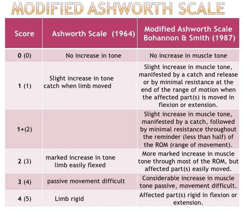 Modified Scale by Modified Ashworth Scale