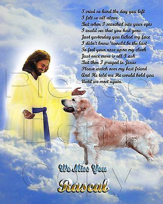 golden retrievals poem 1000 images about favorite verses on holy ghost and savior