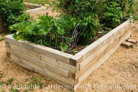 raised bed garden design raised bed garden designs