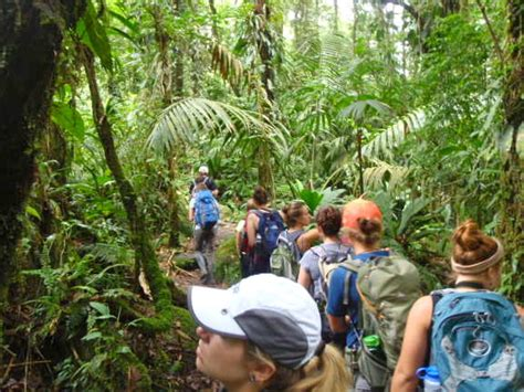 Mba Colleges In Costa Rica by The School For Field Studies Sfs Costa Rica