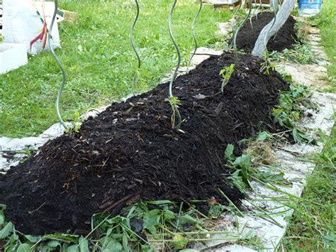Plantation En Novembre Potager by Comment Cr 233 Er Un Potager En Lasagnes