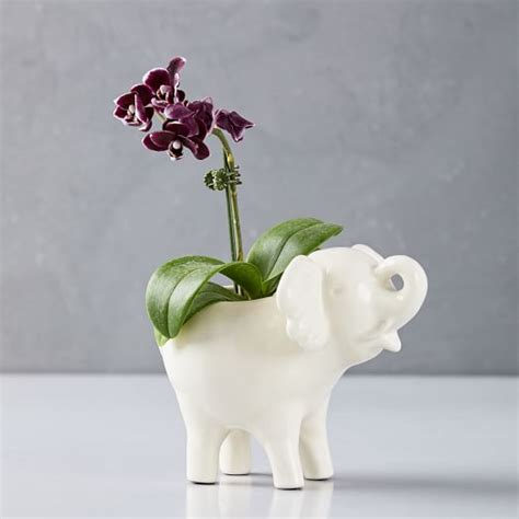 elephant wall planter ceramic elephant planter west elm