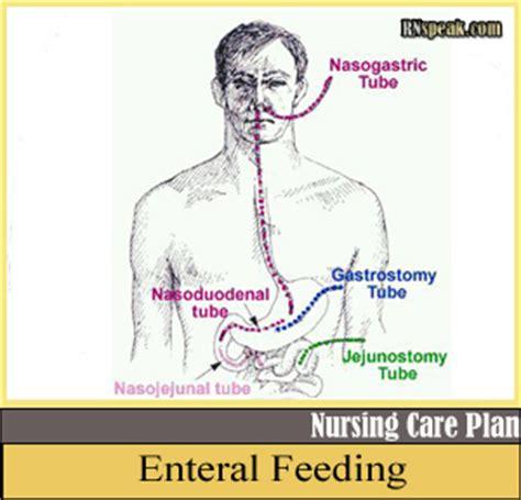 gastrostomy feeding