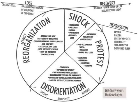 circle of grief diagram quot dealing with s transitions quot with dr ed brackenbury