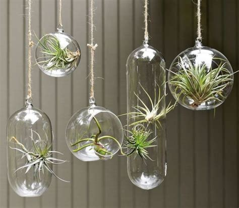 hanging garden containers hanging planters and container garden ideas for indoors